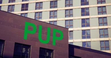 PUP_mojaNDG.pl